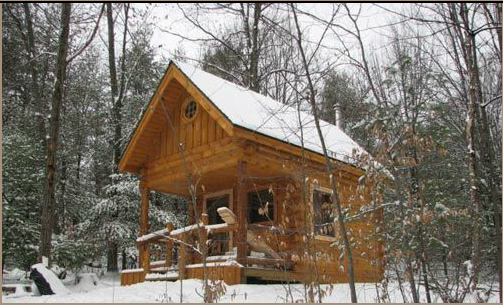 Log cabin build a log cabin pennsylvania montrose for Adirondack cabin builders